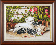 X-1144, Puppies in garden