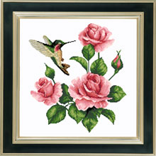 X-924, Hummingbird and roses